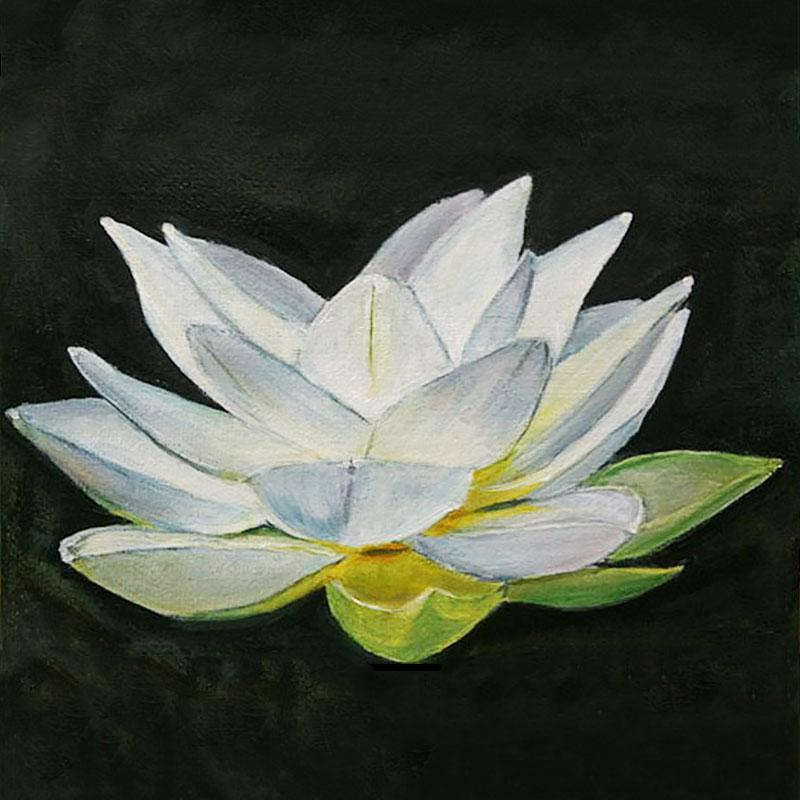 Lotus flower / black and white oil with color acrylic